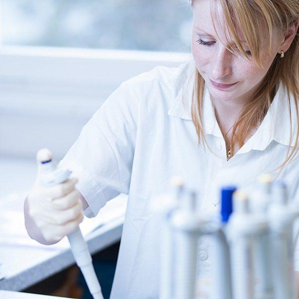 Batteri creati per mimare le cellule staminali formano una comunità