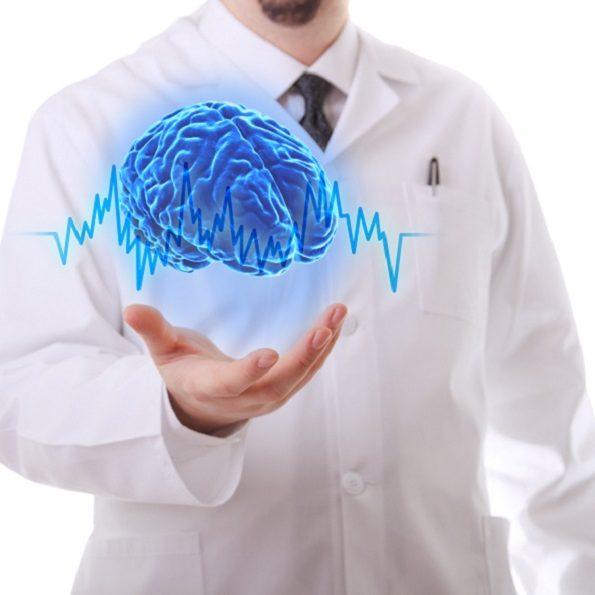 cervelli in miniatura