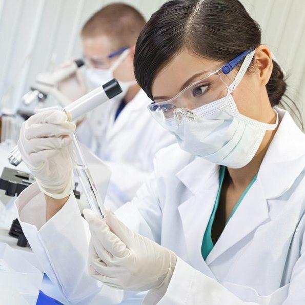 cellule staminali perinatali