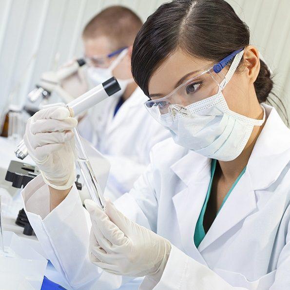 novità cellule staminali
